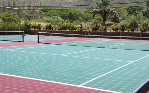 wcc314-tennis